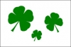 3x5' Shamrocks Day Flag
