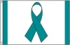 Teal Ribbon Awareness Flag