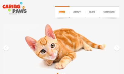 Pets and Animals Web Design