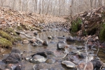 Perrenial stream