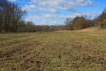 River bottom food plot