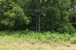 Ladder stand along the river facing soybean field