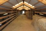 Spaciuos hay loft in horse barn