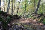 Stream as it nears the Western boundary line