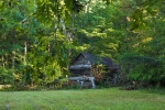 Old barn along the edge of a secluded food plot area