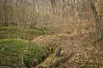 Country Line Creek Tract