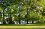 Mature oaks and pines enhance the beauty of the property