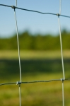Pastures fenced with square wire