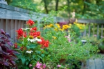 Back deck has plenty of space for decorative plants and flowers