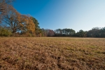 Rear field consists of 5+/- secluded acres
