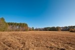 7 contiguous acres of fields located on the front portion of the farm