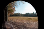 View from a ground blind overlooking a chufa plot