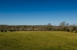 View from the screened in porch overlooking pasture and potential pond site