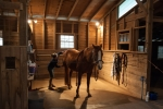 Grooming and tack up area