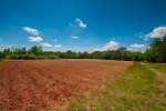 Nearly 12 acres of cropland