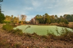 Small pond is a favorite for numerous wildlife species and is located directly beside the food plot area