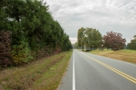 Extensive road frontage on Hwy 119- 563ft
