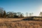 View across western pasture to the neighboring farm