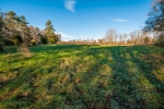 Lush 2 acre fescue pasture located on the SW end of the farm