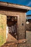 The Corn Shed