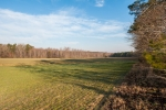 DB Farms is an excellent agriculture, hunting, and residential property.