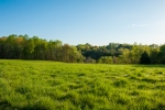 18 acres of lush pastureland