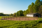 Wonderful early morning view of the horse barn and riding ring