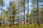 Home is perfectly positioned amongst a 7ac pine plantation