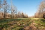 4 acre pasture & potential food plot area runs alongside the duck swamp