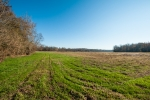 Secluded 51 acre riverside pasture