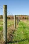 25,000+/- feet of fencing