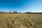 191 acres of open land