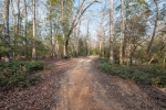 Trail system provides access around the farm's perimeter and interior