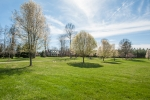 9 acres of open land that could easily be used as pastureland for the equestrian enthusiast