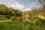 1+ acre stocked pond