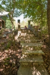 Stone steps leading to the treehouse, outdoor fireplace, and dock