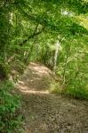 Impressive trail system