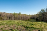 25 acres of fenced pastureland