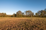 Over 5 acres of well maintained open land