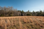 Several areas ideal for a homesite