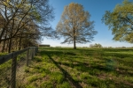6 fenced pastures and 2 paddock areas