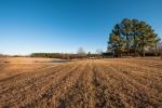 3ac yard and 28 acres of established pastureland