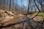Scenic Reedy Fork Creek