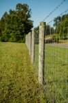 1,730+/-ft of square wire fencing surrounding the 4 acres