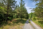 Scenic driveway leads to the home and lake 1.2 miles off the main road