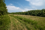 18 acres of open land
