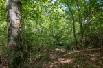 Neighboring Forest Service land can be used for recreation and hunting