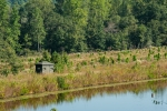 Enclosed hunting blind overlooking food plot beneath the dam