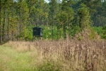 Several food plot areas equipped with elevated box blinds