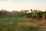 Food plot and wildlife viewing area